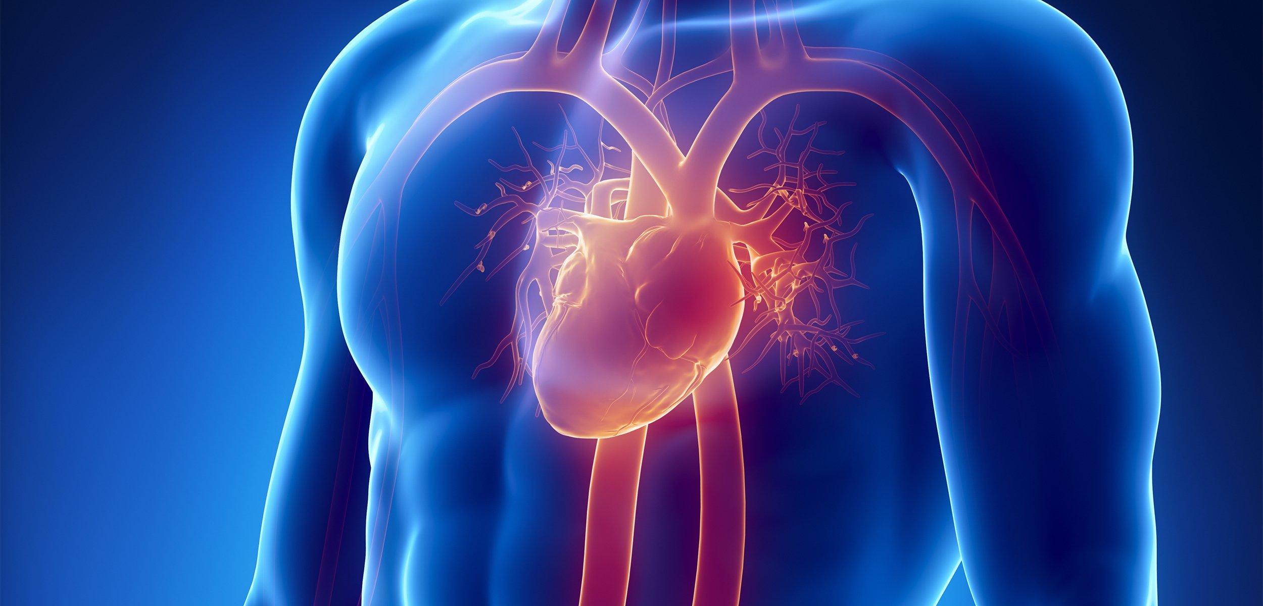 Heart Valve Replacement Surgery